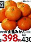 山北みかん 430円(税込)