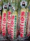 まるごと一本大根 171円(税込)