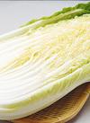白菜 96円(税込)