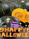 ブラックのジョー(栗かぼちゃ) 31円(税込)