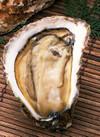 生牡蠣(生食用) 250円(税抜)