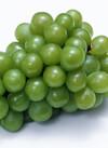 種なしブドウ 258円(税抜)