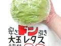大玉レタス 80円