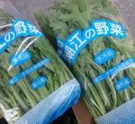 春菊 150円(税抜)