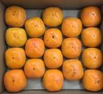 種なし柿 127円(税抜)