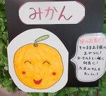 和歌山有田みかん 298円(税抜)