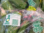 ピーマン 65円(税抜)