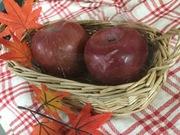 サンふじリンゴ 499円(税抜)
