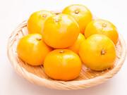 ハウスミカン 598円(税抜)
