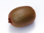 キウイフルーツ 99円