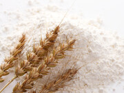 小麦粉フラワー 145円(税抜)