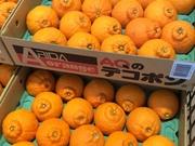 デコポン 138円(税抜)
