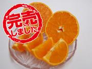 完熟せとか S~2Lサイズ混合 約4.7kg(30~40玉入) 2,780円