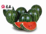 特別栽培農産物 太田農園の情熱小玉すいか 約1.5kg×4玉(赤4玉) 3,880円(税込)