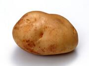新馬鈴薯 198円(税抜)