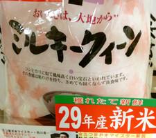 ミルキークイーン 1,490円(税抜)