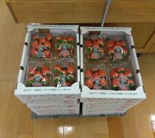 いちご(各種) 498円(税抜)