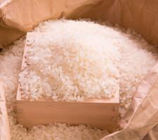 登米産つや姫 10kg 3,480円(税抜)