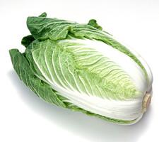 白菜 150円(税抜)