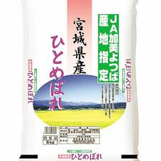 ひとめぼれ 1,790円(税抜)