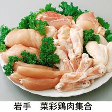 菜彩鶏全品 20%引