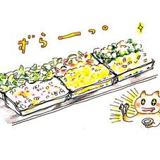お惣菜バイキング 99円(税抜)