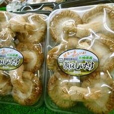 生椎茸 99円(税抜)