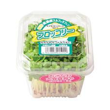 ブロッコリースプラウト 99円(税抜)