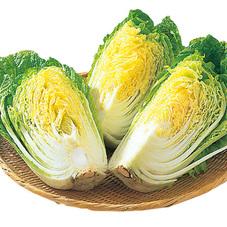白菜 157円(税抜)