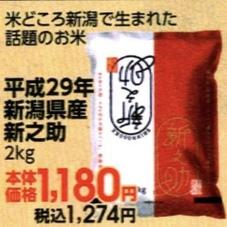 新之助 1,180円(税抜)