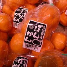 立目ぽんかん 498円(税抜)