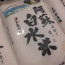阿蘇白水米 1,650円(税抜)