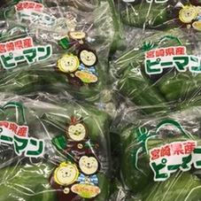 ピーマン 95円(税抜)