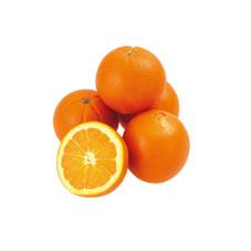 糖度保証ネーブルオレンジ 398円(税抜)