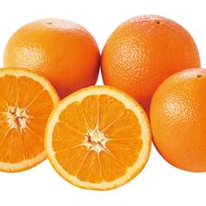 ネーブルオレンジ・ミネオラオレンジ 98円(税抜)