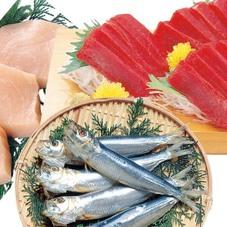切身、丸魚、お刺身、干物、漬魚など 1,000円(税抜)