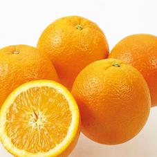 オレンジ 97円(税抜)