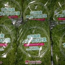 サラダわさび菜 78円(税抜)