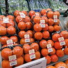 たんかん 398円(税抜)