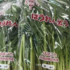 ほうれん草 95円(税抜)