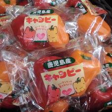 キャンピー 158円(税抜)
