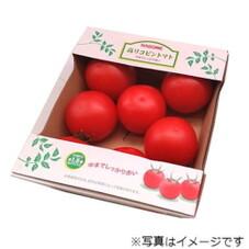 高リコピントマト 398円(税抜)
