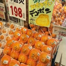 デコポン 380円(税抜)