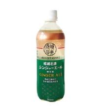 ジンジャーエール 150円(税抜)