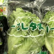 グリーンリーフ 138円(税抜)