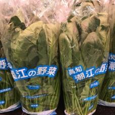 ホーレン草 138円(税抜)