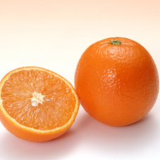 オレンジ(大玉) 98円(税抜)