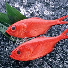 金目鯛(約500gサイズ) 1,058円