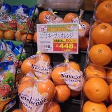 オレンジ 448円(税抜)