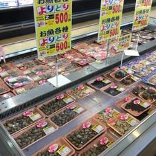 お魚よりどり2パック 500円(税抜)
